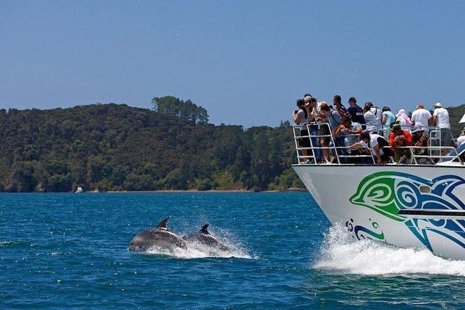 Private Tour: Bay of Islands Day Trip from Auckland