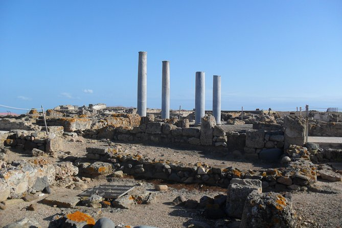 Tour to the archaeological site of Nora