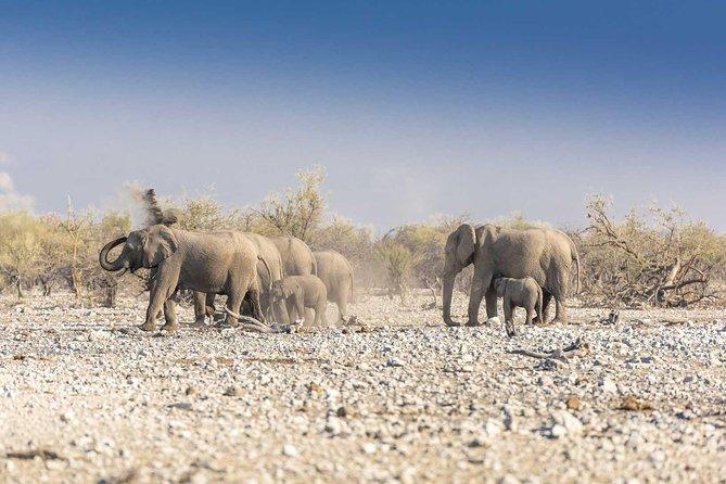 17 Days Namibia, Okavango Delta & Victoria Falls Accommodated Adventure
