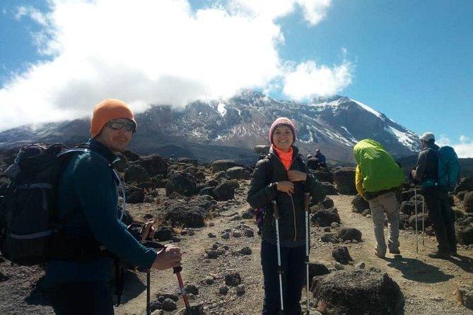 Climbing Kilimanjaro Via Lemosho 7 Days With Boker Adventures