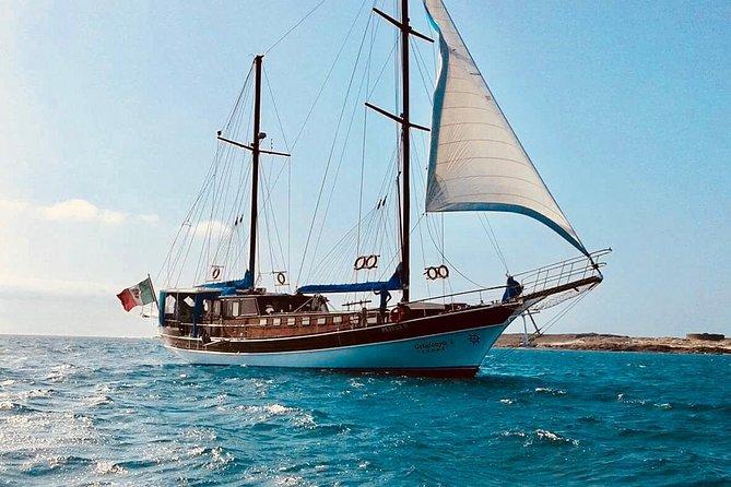 Bay Cruise Boa Vista