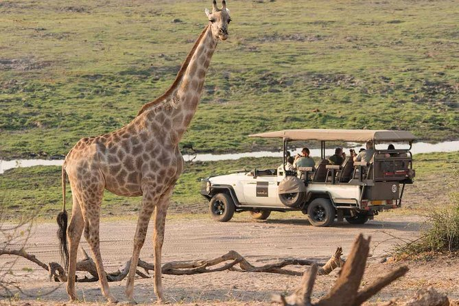 Southern African Photography Safaris and Experiences