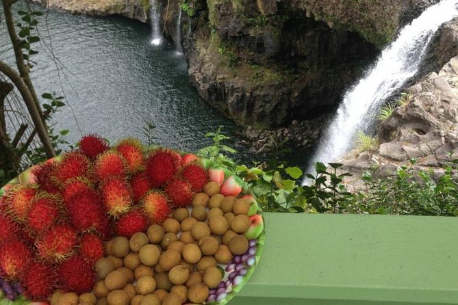 Taste local fruits and a private farm