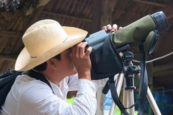 Bird watching in La Mancha