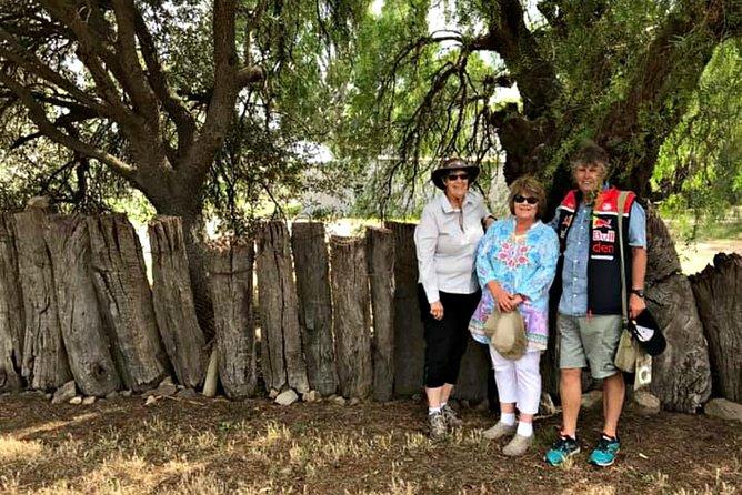 Original settler's paling fence in the village of Krondorf