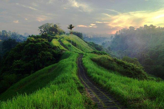 Campuhan Ridge Walk - Alas Arum Swing and Tagenungan Waterfall