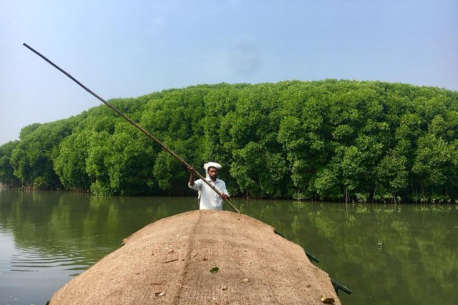 Into the Mangroves: Calicut Mangrove Trail by Tyndis