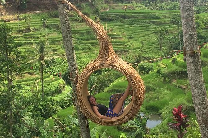 Private Ubud Tour Car Charter And Customs Itinerary