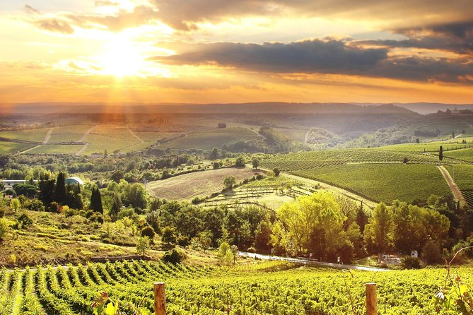Private The Essence of Tuscany: Chianti Classico, Montalcino, Montepulciano