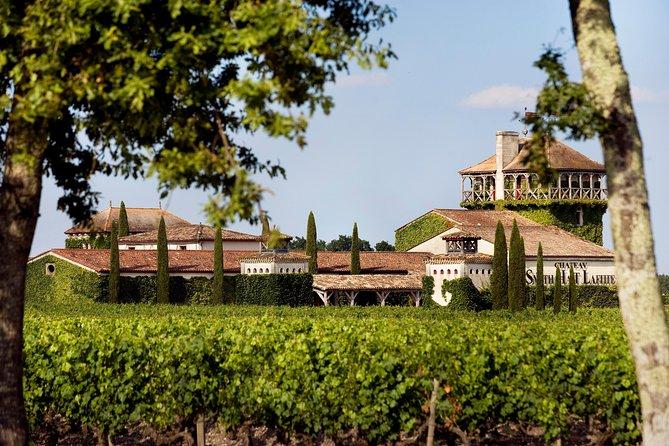 Excursão privada de um dia ao vinho Bordeaux