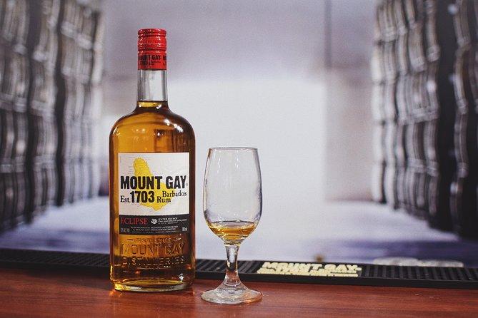 Mount Gay Signature Rum Tasting in Barbados