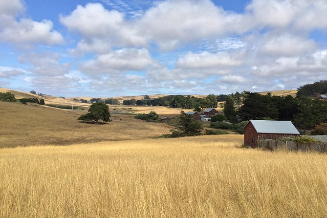 Farmhouses and barns dot the countryside of West Marin's ranchlands.
