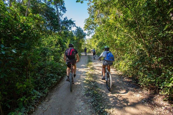Cenote trail jungle bike tour & 3 cenotes in Tulum with lunch
