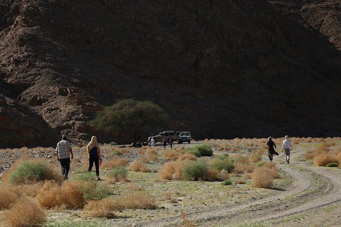 Wadi El Gemal - Safari and Trekking photo 2