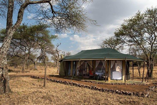 3-Days Safari Tour Tarangire, Ngorongoro & Lake Manyara