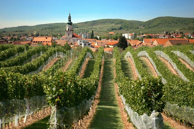 Private Small Carpathian Wine Tour