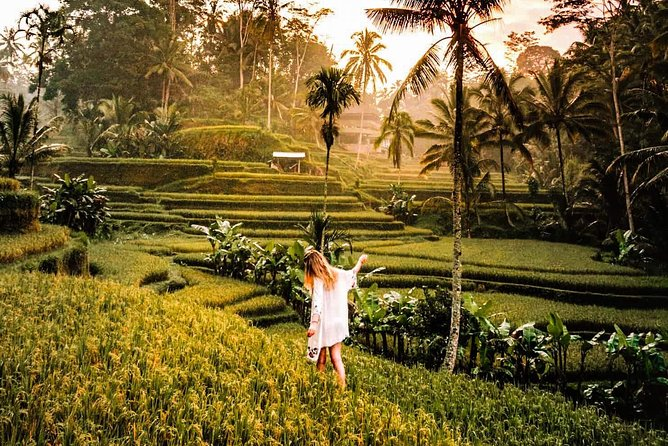 Ubud Private Customized Tour
