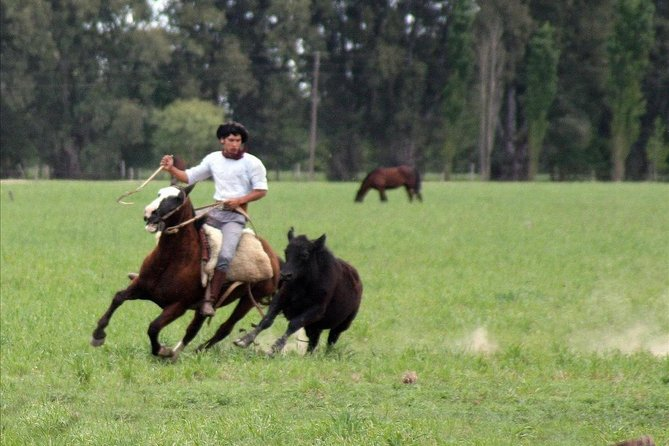 Gaucho Day Tour Ranch in San Antonio de Areco from Buenos Aires photo 9