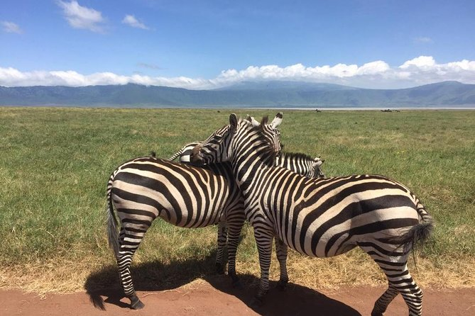 1 Day Tour to Ngorongoro Crater