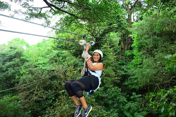 Eco-Adventure Park Premium Day Pass