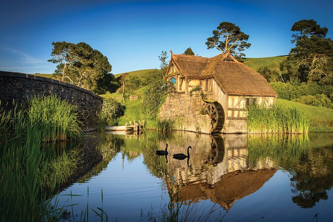 Rotorua to Auckland via Hobbiton Movie Set and Waitomo Caves OneWay Private Tour