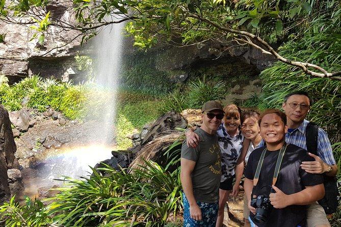 Small group Gold Coast Mountain Tour: Springbrook National Park and Mt Tamborine