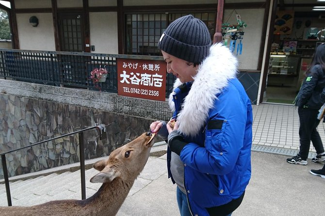 Nara Todai-ji Lazy Bird Tour  photo 17