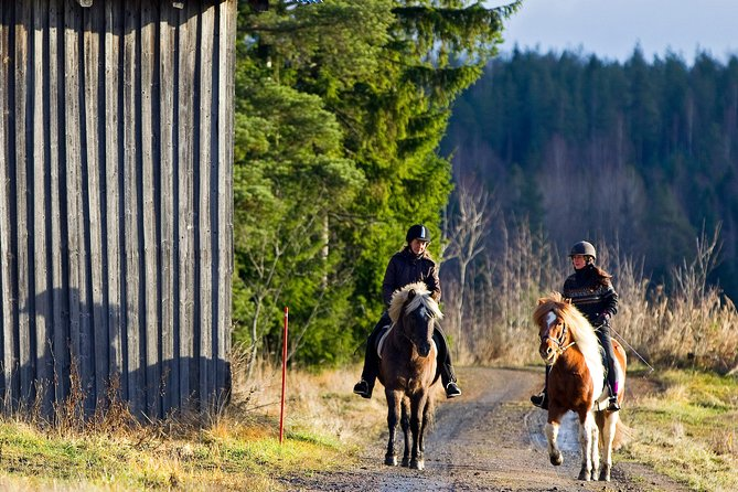 Nature Excursions on Horseback in close vicinity to Helsinki