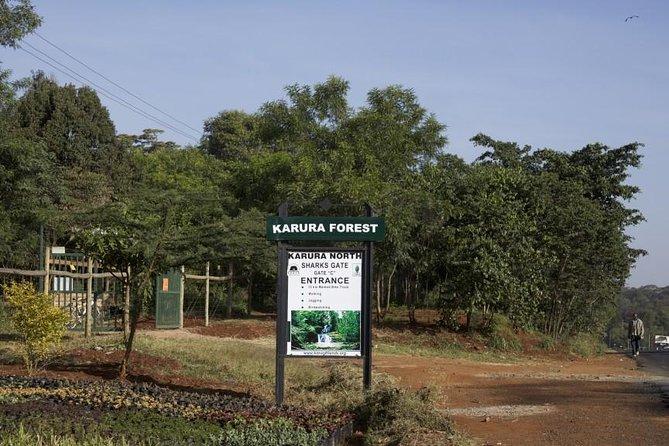 Urban Forest Tour in Nairobi
