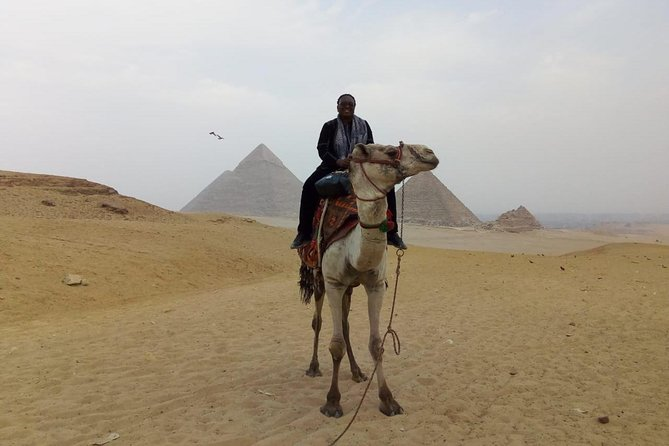 Camel Ride around Giza Pyramids from cairo and giza hotels photo 6