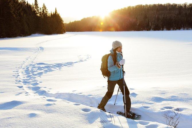 Rovaniemi evening snowshoe hike