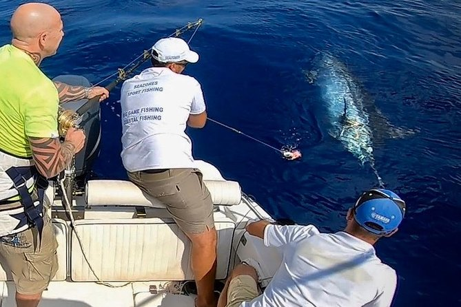 Azores Big Game Fishing 8h from Ponta Delgada PRIVATE