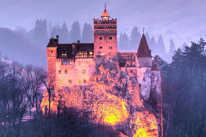 Executive Bear Sanctuary, Dracula's Castle and Brasov Day Trip (12h)