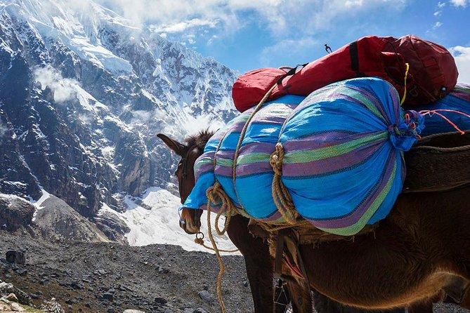 Salkantay Trek to Machu Picchu (4 Days)