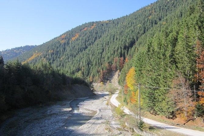 Azuga Valley