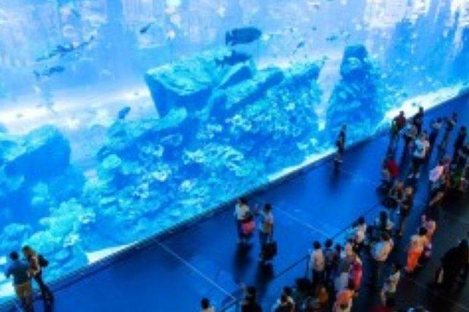 Aquarium De Dubaï Et Zoo Sous-marin
