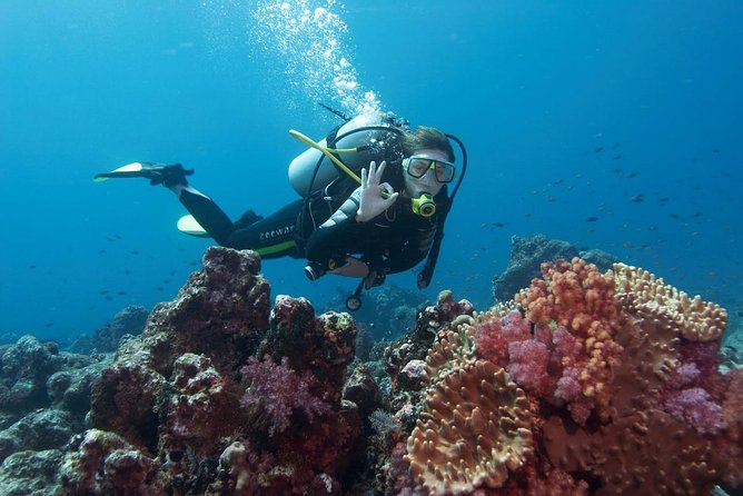 Scuba Diving from Antalya