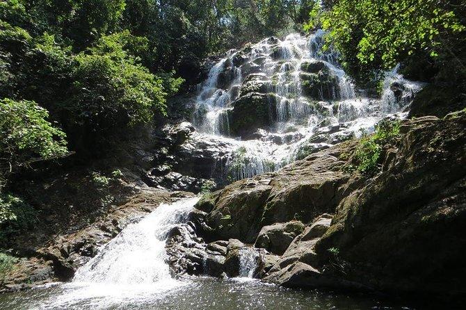 UDZUNGWA NATIONAL PARK AND WATERFALLS - 3 Days