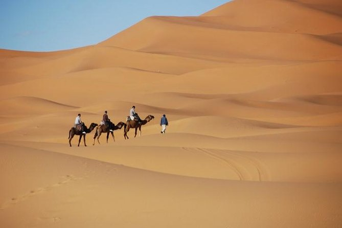 Touring Morocco imperial cities and Sahara desert