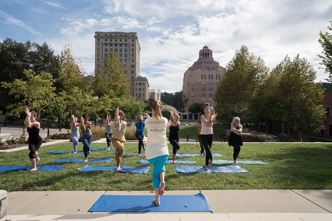 Asheville's Urban Wellness Tour - a walking tour with a wellness twist! photo 4