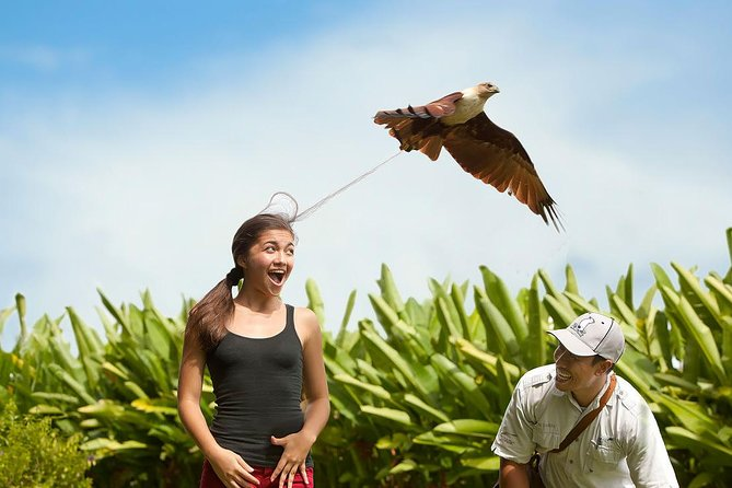 Private - Bali Bird Park with Painting and Silver Village