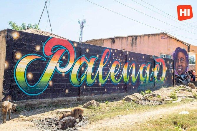 San Basilio Del Palenque Private Tour