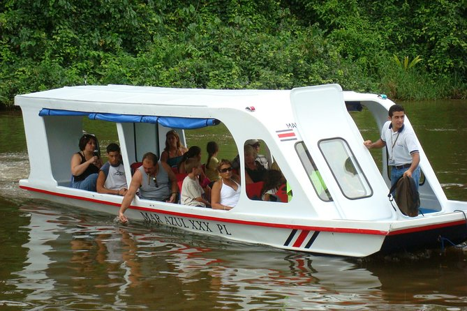 Tortuguero Canal Eco Cruise and Banana Plantation Shore Excursion from Limon