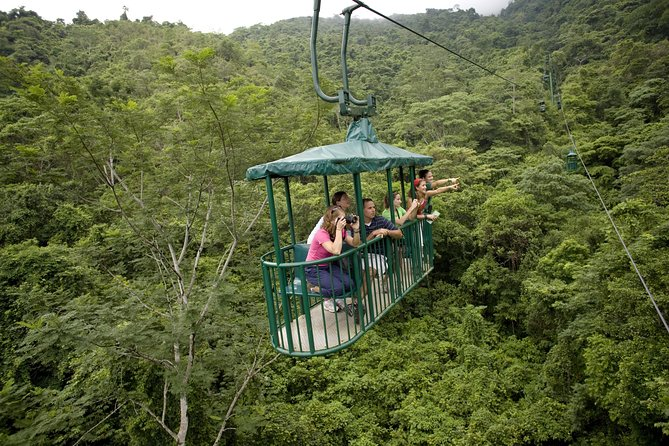 Rainforest Aerial Tram photo 9