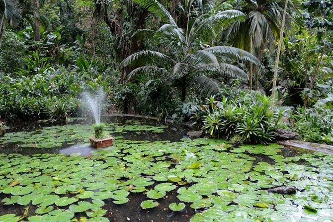 Denarau: Garden of the Sleeping Giants, Temple, Markets Shore Excursion