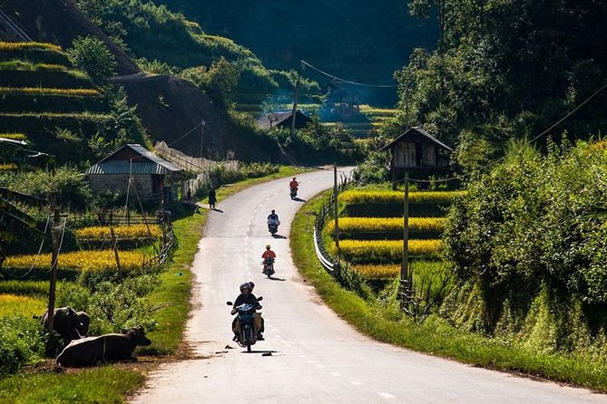 Private tour Mu Cang Chai rice terraces with trekking and homestay 3days photo 7