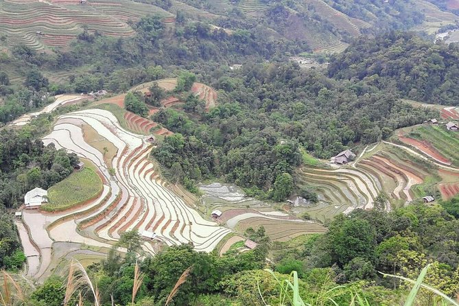 Private tour Mu Cang Chai rice terraces with trekking and homestay 3days photo 4
