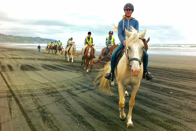 Muriwai Beach Day Tour