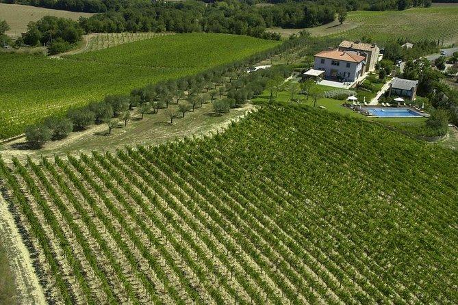 Pic nic and wine tasting near Todi