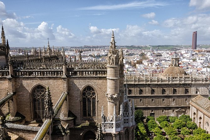 Barrio de Santa Cruz & Seville Cathedral private guided tour